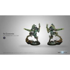 The Charontids (HMG)